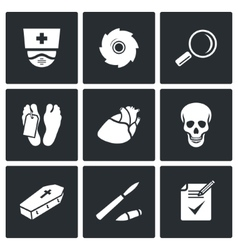 Pathologist and morgue icons vector