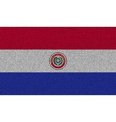 Flags paraguay on denim texture vector