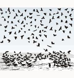 Crows in Winter vector image
