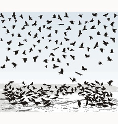 Crows in Winter vector image vector image