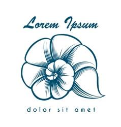 Sea shell logo vector