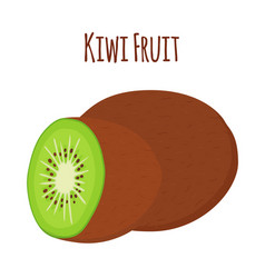 tropical fruit exotic kiwiflat style vector image vector image