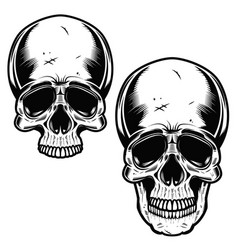 Collection of hand drawn skulls in monochrome vector