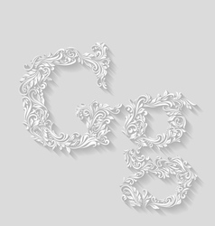 Decorated letter g vector