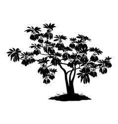 Exotic plant silhouette vector