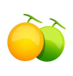 Icon melon vector