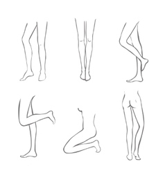Naked legs collection-set of female legs in vector