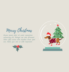 Christmas holiday background with funny badger dog vector