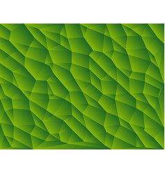 Green polygon abstract triangulated background vector
