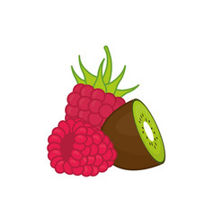 Kiwi and raspberry delicious fruits vector