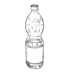 sketch of plastic bottle vector image vector image