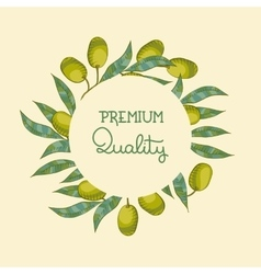 Background with olive branch vector