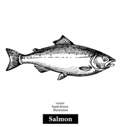 Hand drawn sketch seafood black and white vintage vector