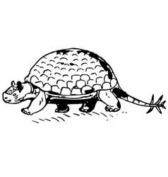 prehistorical turtle vector image