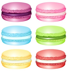 Macaron with different flavors vector