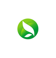 abstract green leaf eco logo vector image