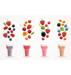 Berry Smoothies Set vector image
