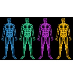 Coloured male bodies vector