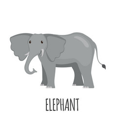 Cute elephant in flat style vector