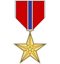 Bronze star medal vector