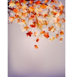 Beautiful autumn background EPS 10 vector image