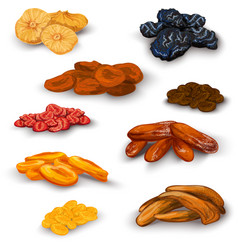 Dried fruit icons set vector