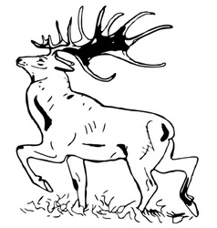 deer with large antlers vector image