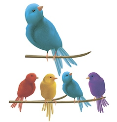 Colorful birds vector