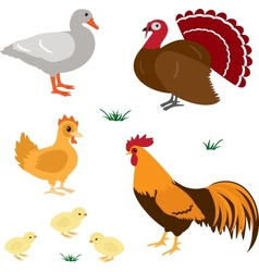 Farm animals set 4 vector image