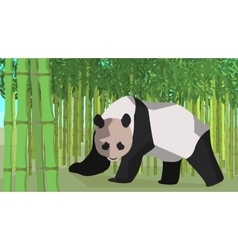Panda in a bamboo grove animal nature vector