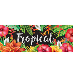 banner from tropical flowers vector image