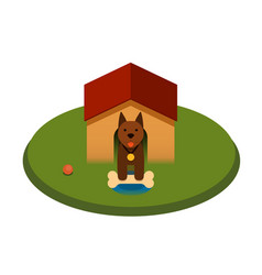 Brown puppy dog with bone in the doghouse - flat vector