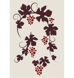 grape vines silhouettes set vector image vector image