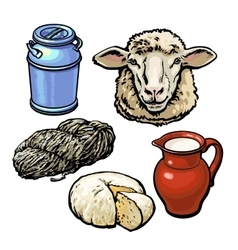 head of sheep and production products vector image vector image