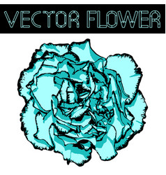 Clove flower with cyan petals and black edging vector