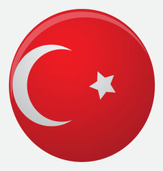 Turkey flag icon flat vector
