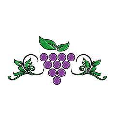 Grape leaf wine fruit product emblem vector