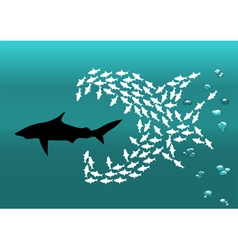 Flock of small fish and shark vector