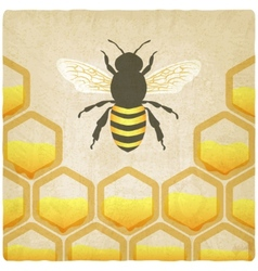 Bee honeycomb old background vector