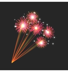 New firework sign vector