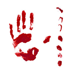 Horror blood hand and finger print vector