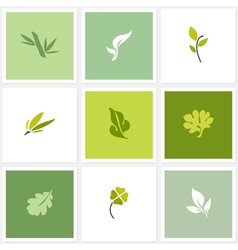 Leaf - Set of posters design elements vector image vector image