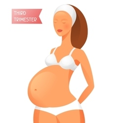 Pregnant women in third trimester of pregnancy vector image