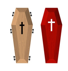 Set of coffins Red beautiful expensive coffin and vector image