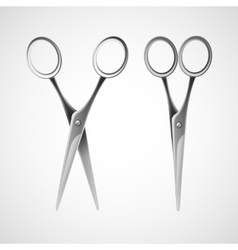 Silver scissors isolated in white background vector