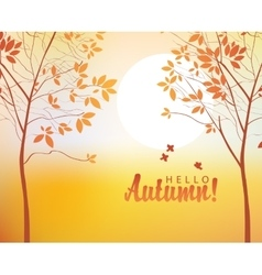 autumn landscape with trees vector image vector image