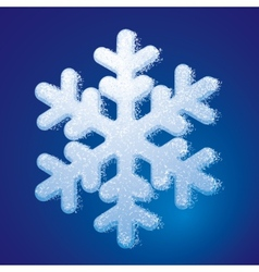 Frosted snowflake vector
