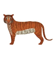 Tiger abstract design vector