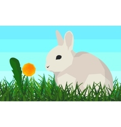 Rabbit on the grass flower seamless animal and vector