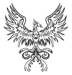 sketch drawing of phoenix vector image